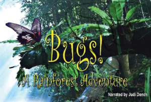 Bugs! A Rainforest Adventure